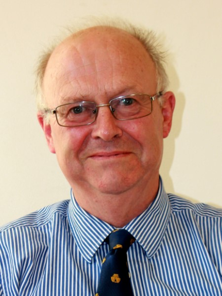 David Owens, Councillor